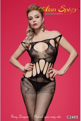 C2405- Sexy Lingerie: Bodystocking in mesh knit