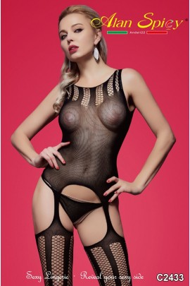 C2433- Sexy Lingerie: Bodystocking in mesh knit