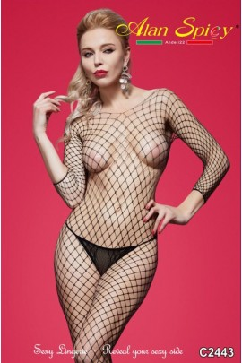 C2443- Sexy Lingerie: Bodystocking in mesh knit