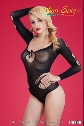 C6996- Sexy Lingerie: Bodystocking in mesh knit